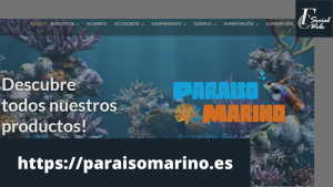 Página web en Molina de Segura