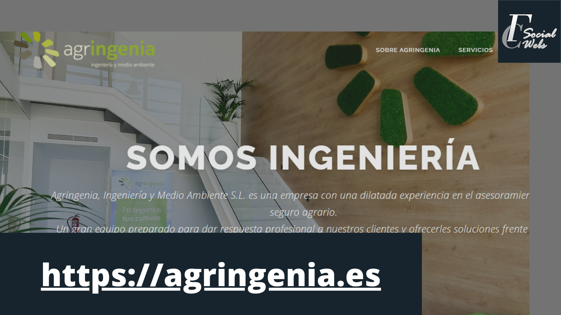 Green and White Corporate Technology Pitch Deck Presentation Diseño de Páginas web